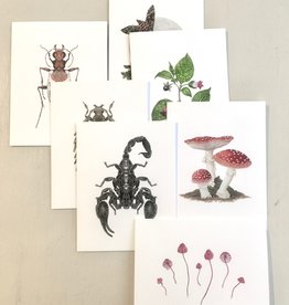 Open Sea Design Greeting Cards by Open Sea Design