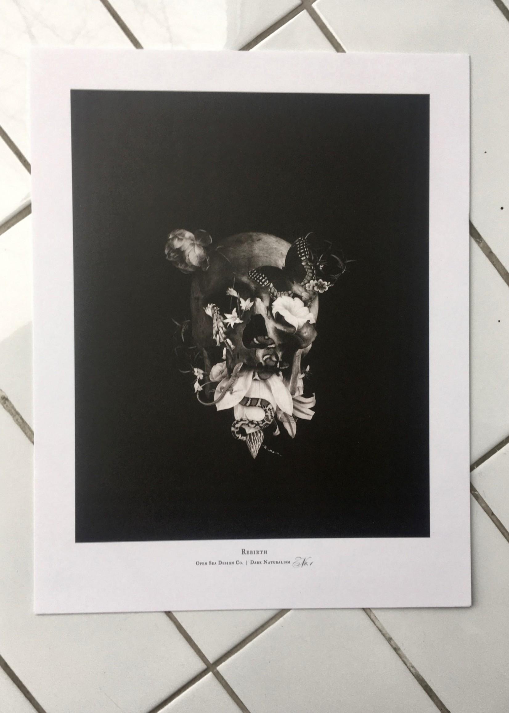 "Open Sea Design  Open Sea Design print - 11"" x 14"""