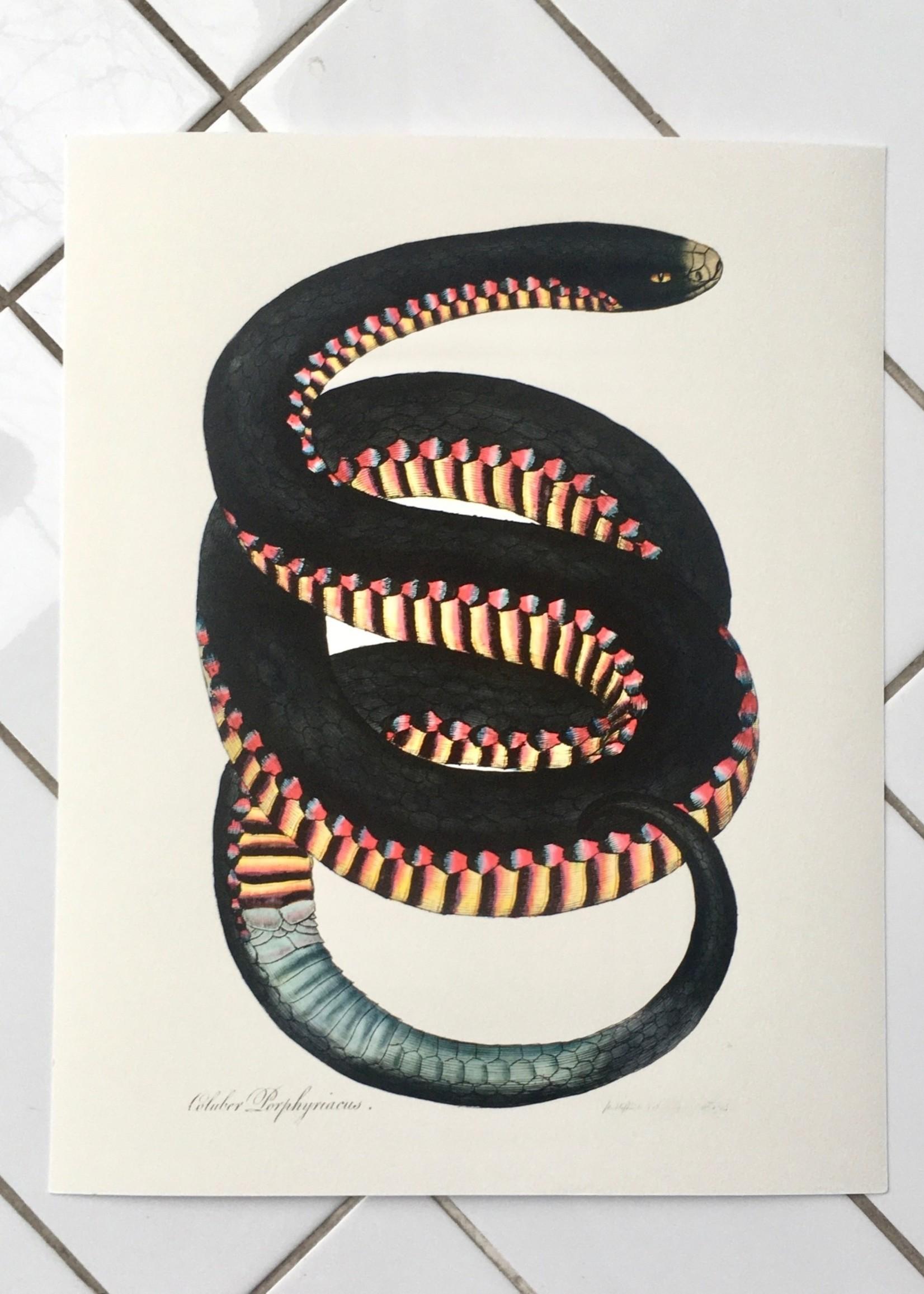 Capricorn Press Affichette  de Capricorn Press - 28cm x 35cm