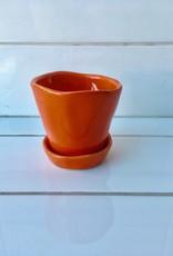 "Chive ""Tika"" petit pot pour plantes"