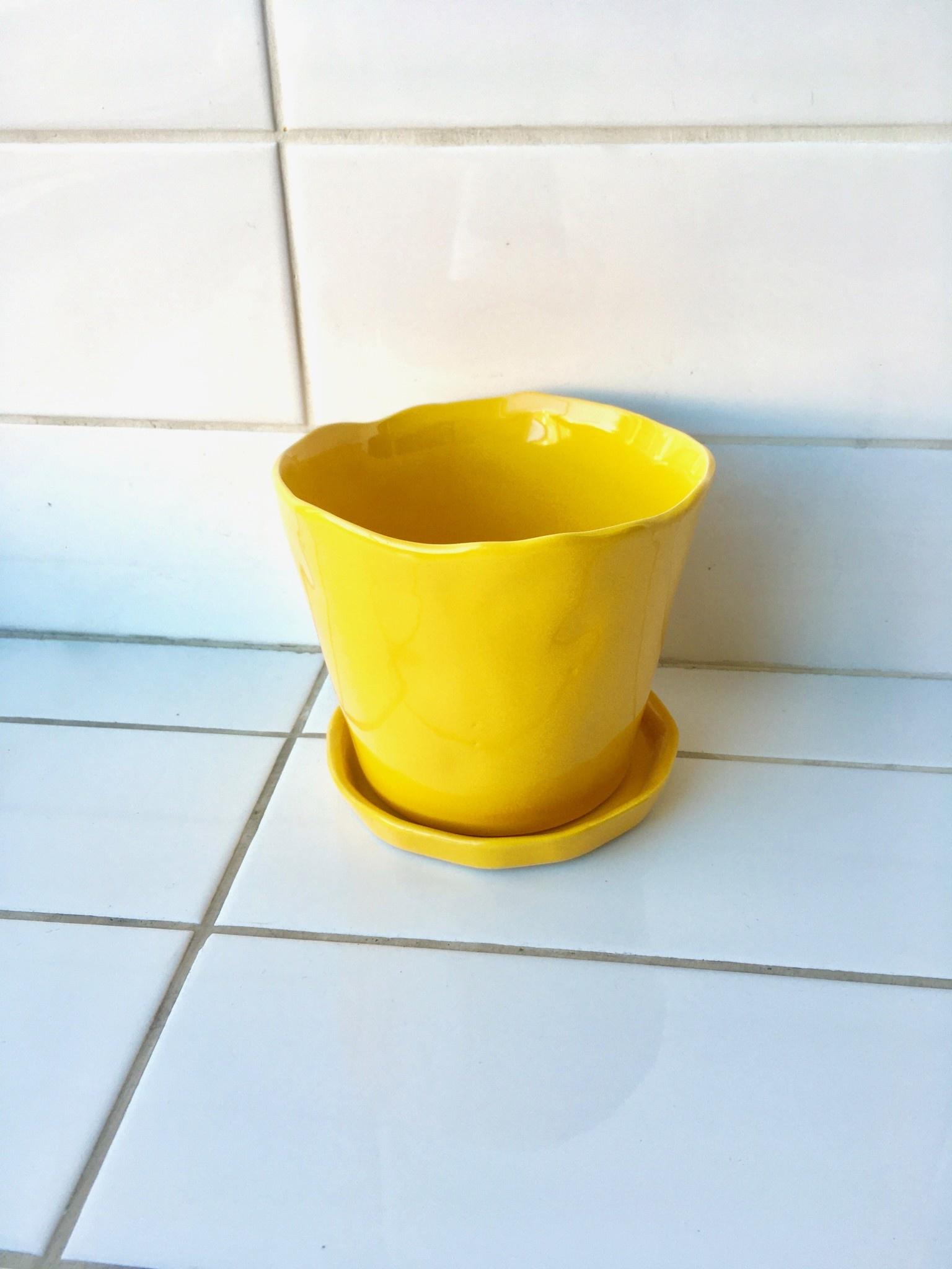 "Chive ""Tika"" pot pour plantes - 5"""