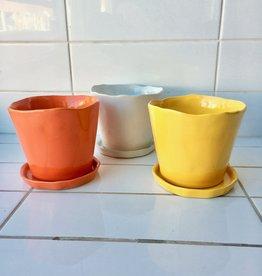 """Chive """"Tika"""" pots pour plantes - 5"""""""