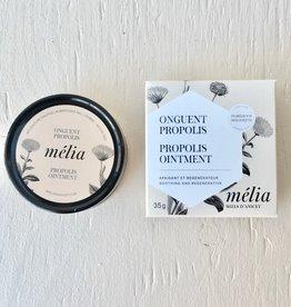 Miel D'Anicet Honey Ointment Propolis