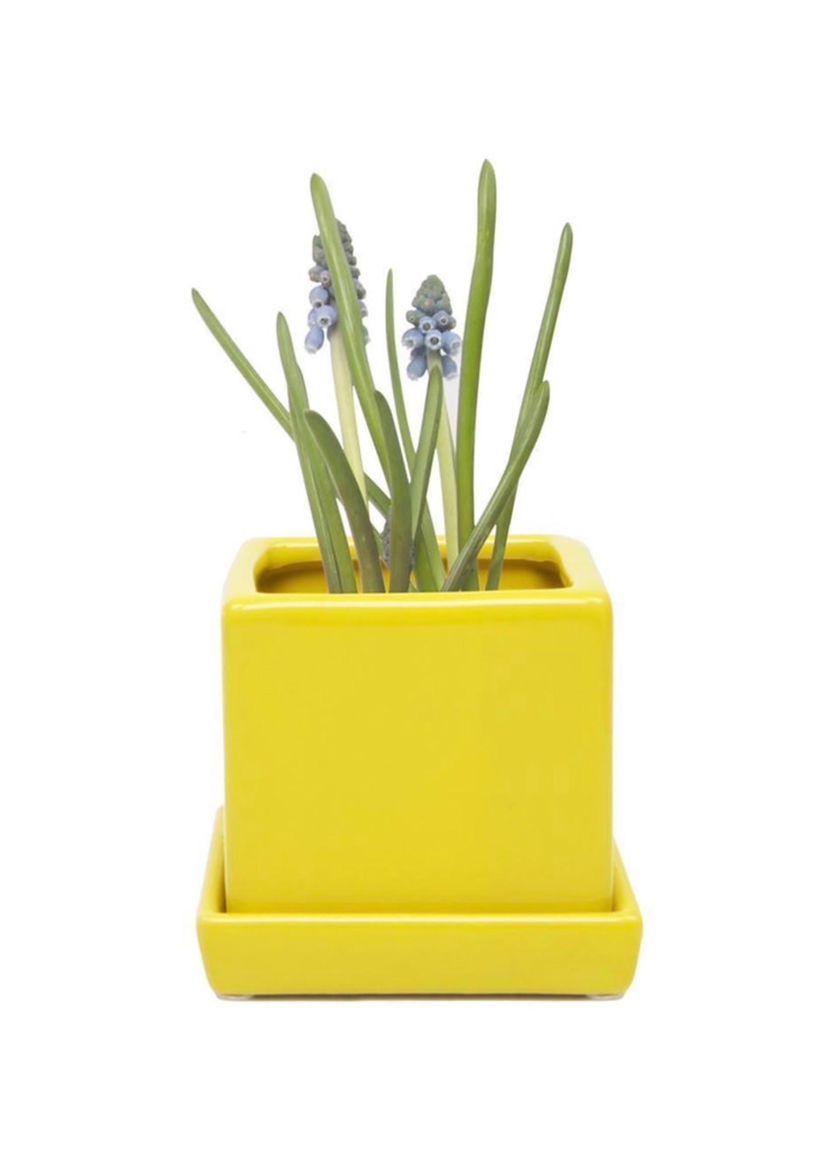 Chive Cube Plant Pots