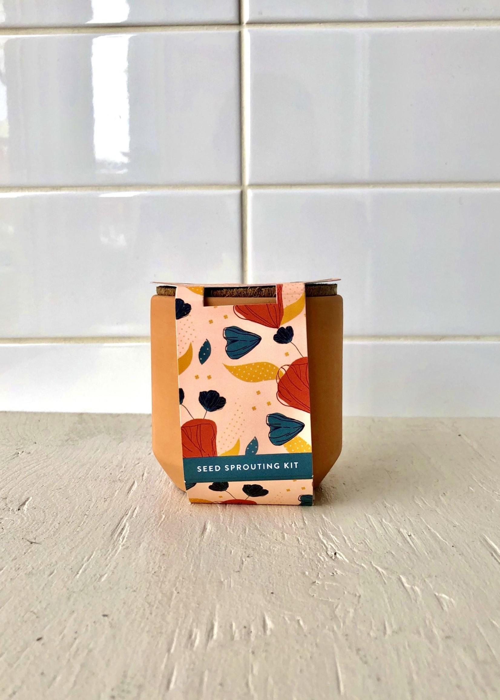Modern Sprout Mini Terracotta Garden Kits