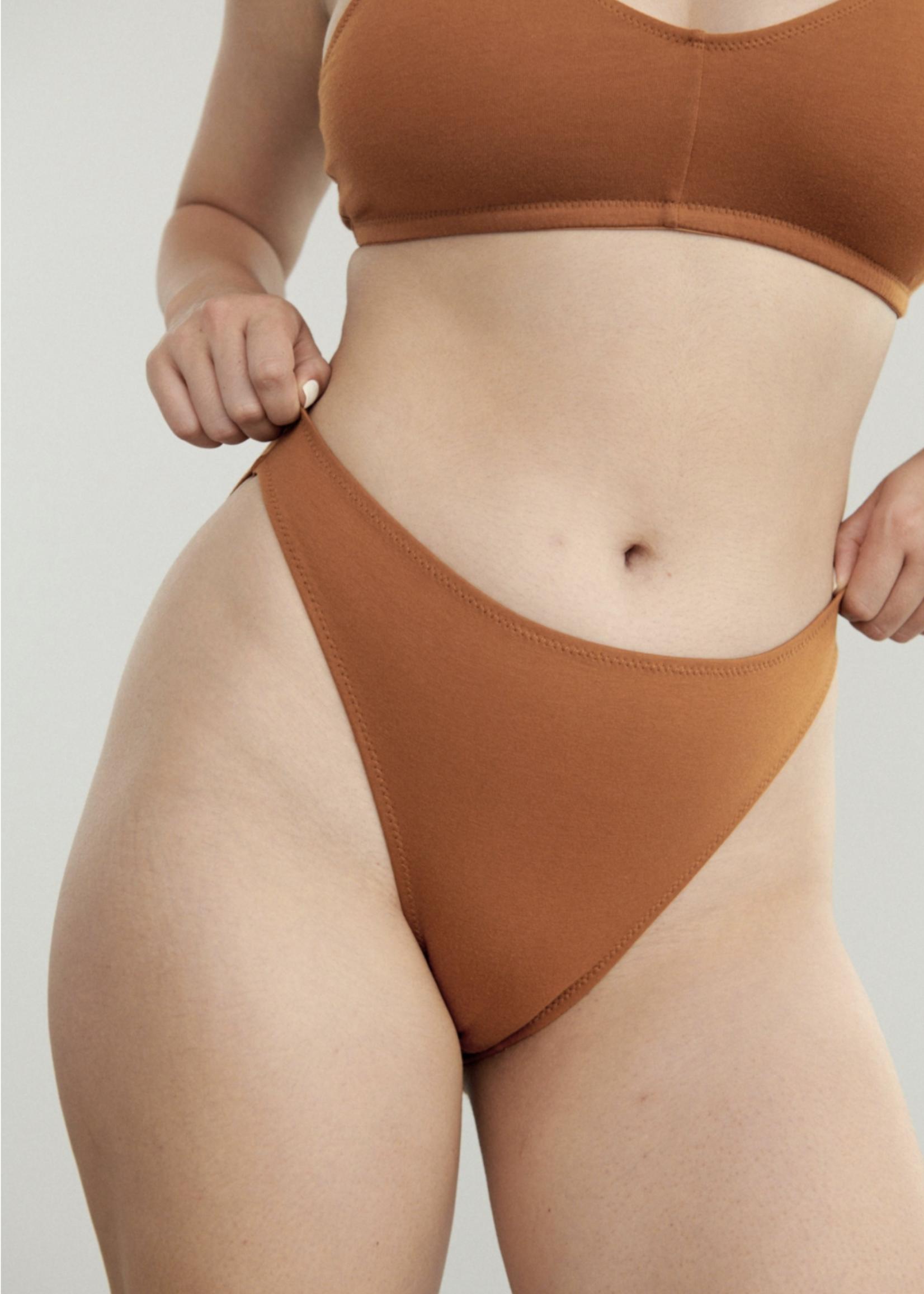 Blush Lingerie Bikini High Leg Underwear