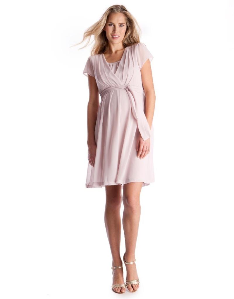 08ad30a8c8ff9 Seraphine Pleated Maternity & Nursing Dress - Steveston Village ...