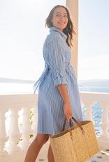 Seraphine Ariadne Pinstripe Shirt Maternity & Nursing Dress