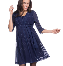Seraphine Dorothea Pleated Maternity & Nursing Dress