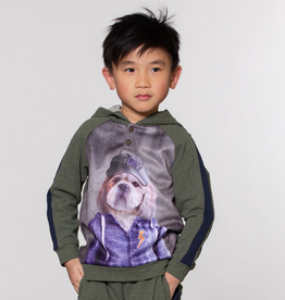 Deux Par Deux Khaki Hoodie Hipster Dog for Boy