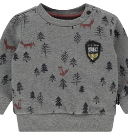 Noppies Kids Long Sleeve Allentown Sweater for Baby Boy