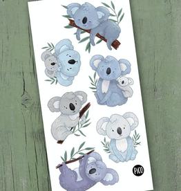 PiCO Tatoo Lorik the Koala