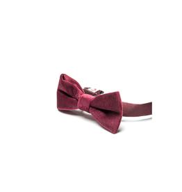Appaman Burgundy Velvet Bow Tie