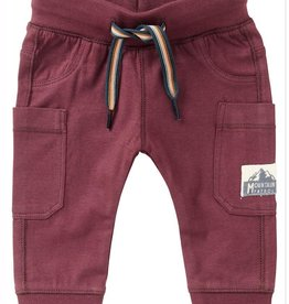Noppies Kids Venterstad Baby Boy's Sweatpants in Dusty Red