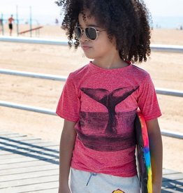 Appaman Appaman, Whale of a Tail Graphic Tee, True Red Heather, 4yrs