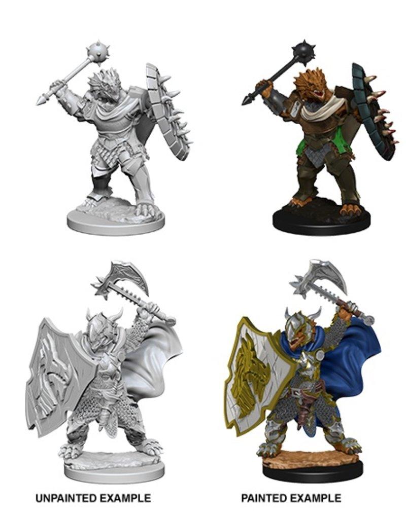 Wizk!ds D&D Nolzur's Marvelous Miniatures: Dragonborn Paladin