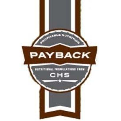 CHS Nutrition Payback Kountry Buffet 14%