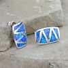 Montana Silversmiths Montana Silversmith River of Lights Walking Life's Path Earrings