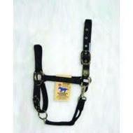 Intervet Inc. Hamilton Horse Halter 1DAS