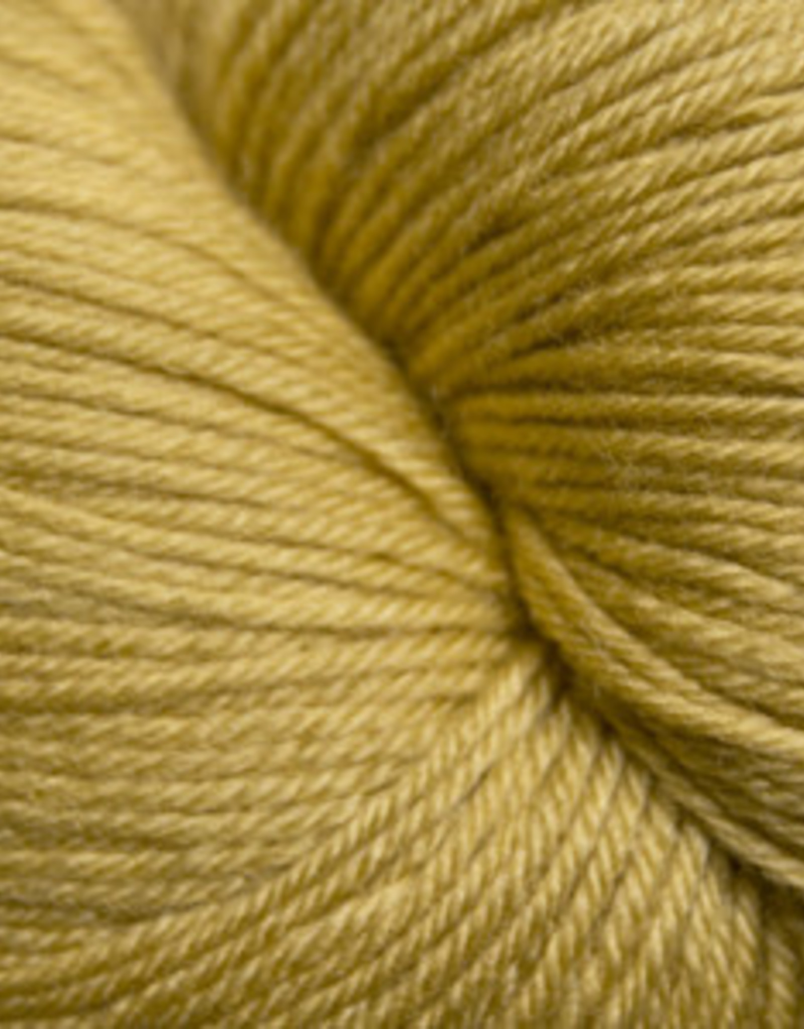 Cascade Yarns Heritage Sock Burnished Gold