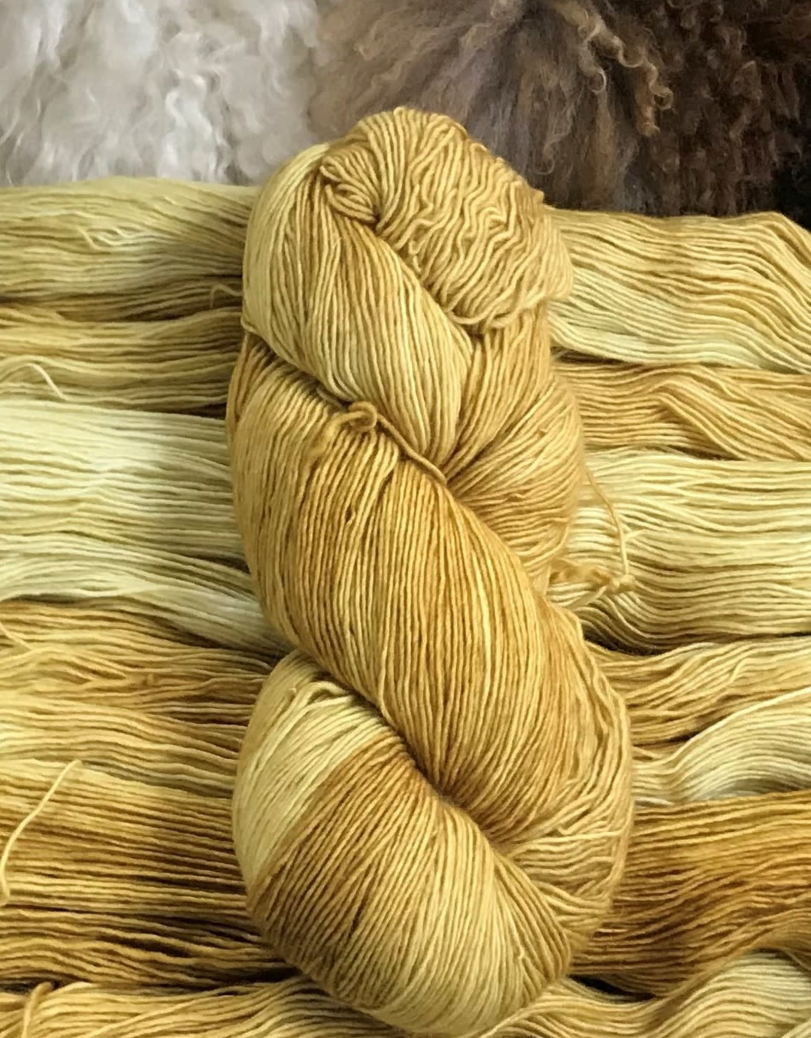 Palouse Yarn Co Merino Fine Salted Butter