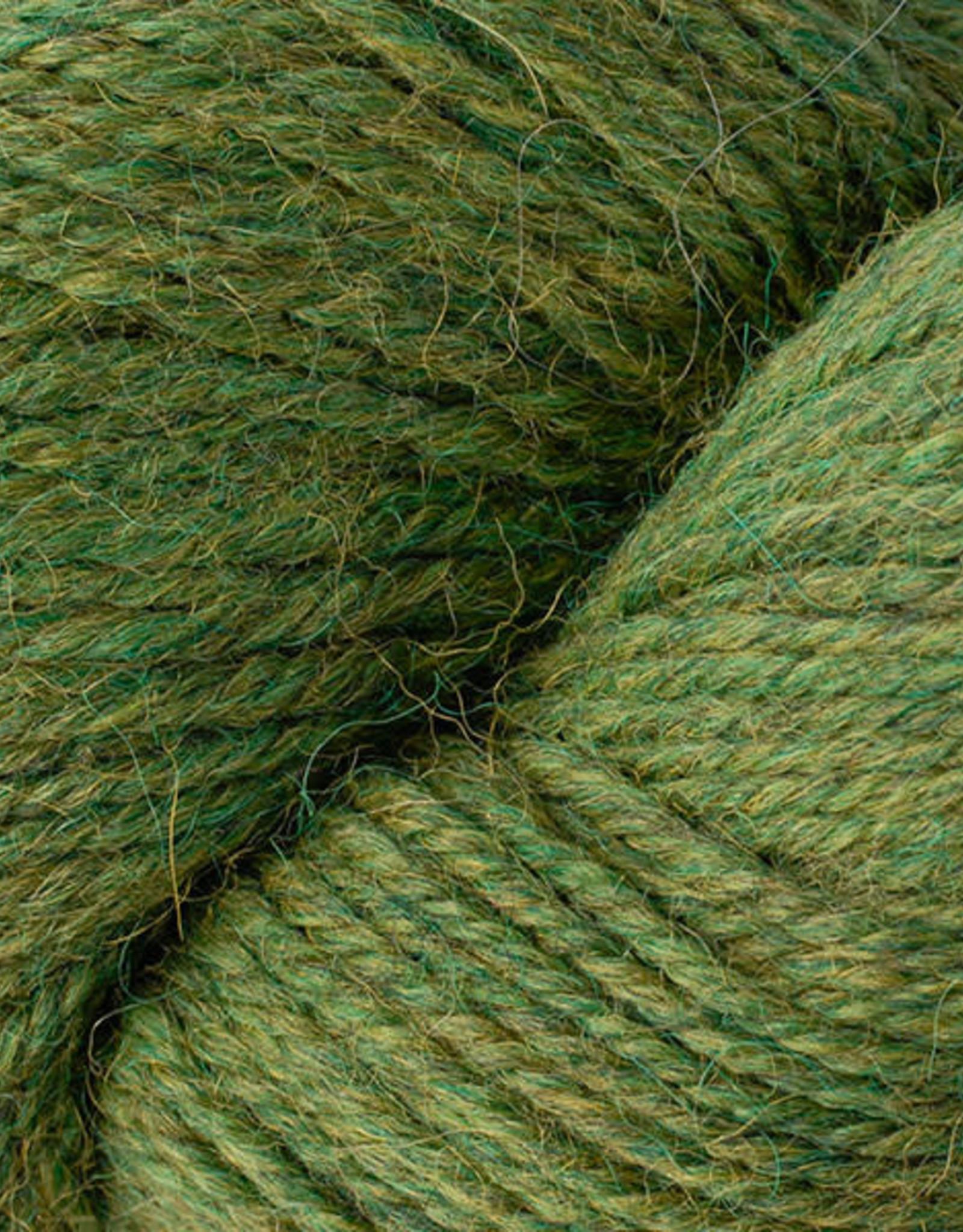 Berroco Ultra Alpaca Worst 6273 irwyn green mix