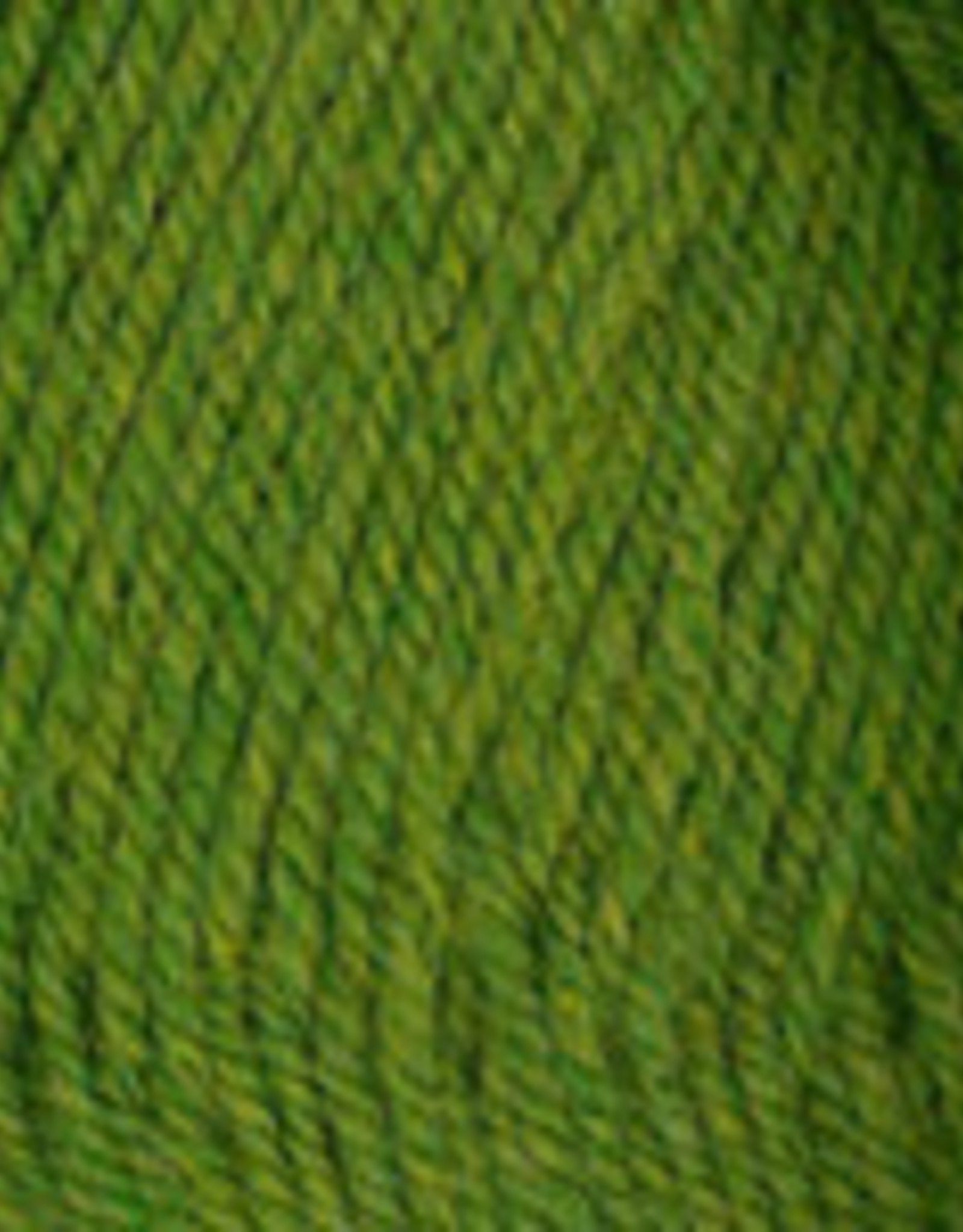 Plymouth Yarns Encore 100g 6004 shamrock heather