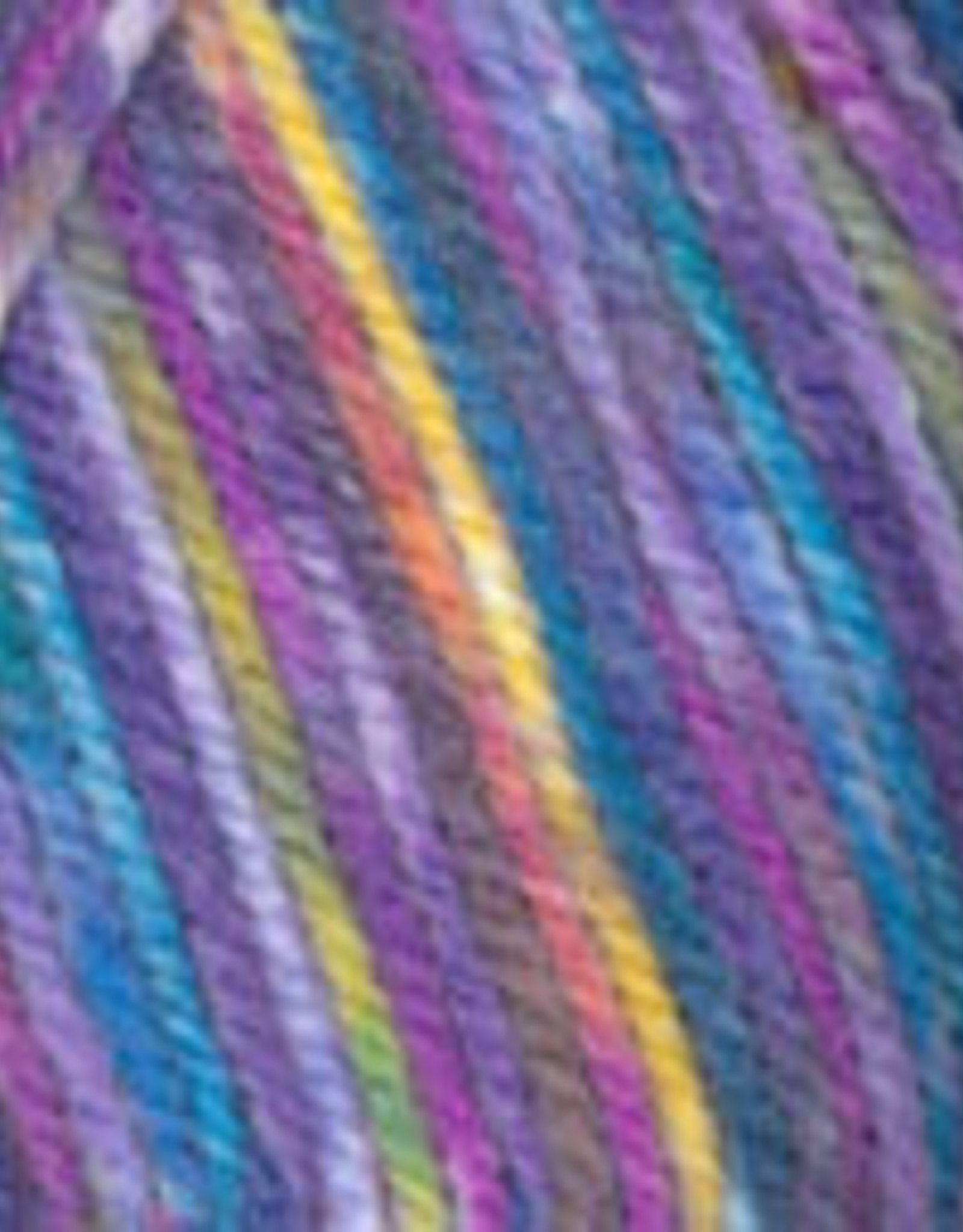 Plymouth Yarns Encore 100g ColorSpun 8004 rainbow