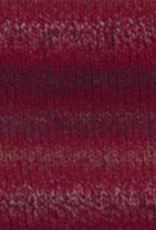 Plymouth Yarns Encore 100g ColorSpun 7794 reds