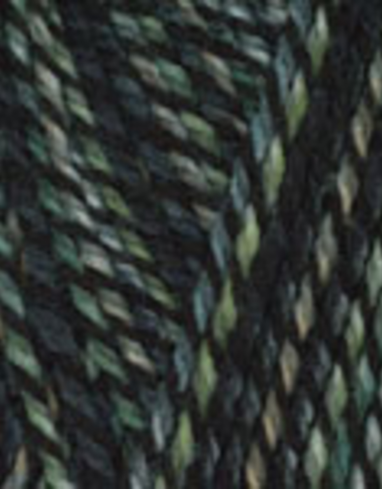 Plymouth Yarns Encore 100g ColorSpun 7810 green grey