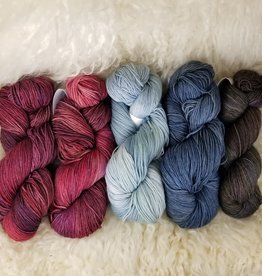 Palouse Yarn Co KIT Slipstravaganza MKAL Northern Lights & Tues Combo
