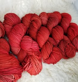 Palouse Yarn Co EasyWash Wstd sockeye salmon