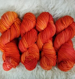 Palouse Yarn Co House EasyWash Wrst Fall Blaze