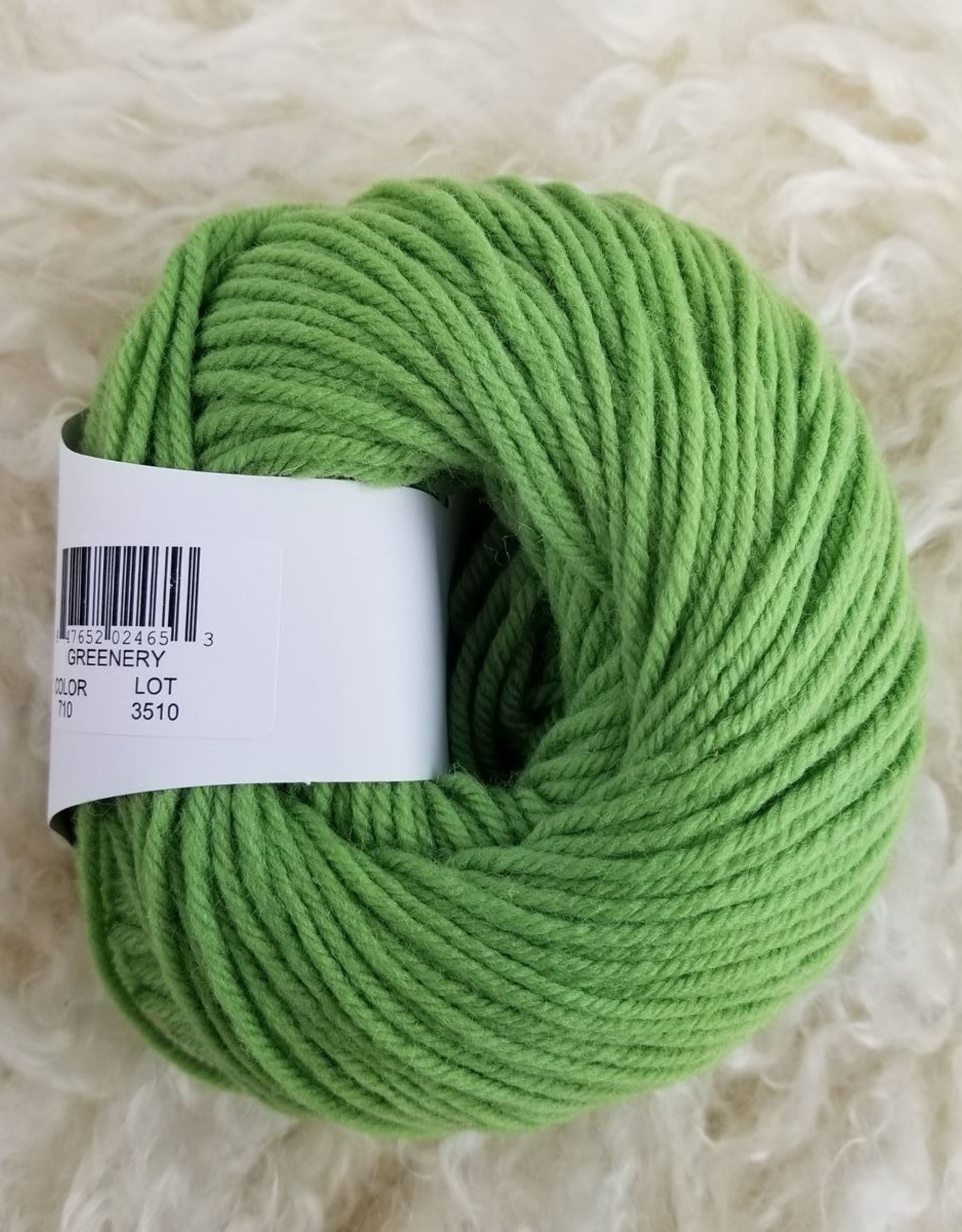 Universal Yarns Deluxe Worsted SW 100g 710 greenery