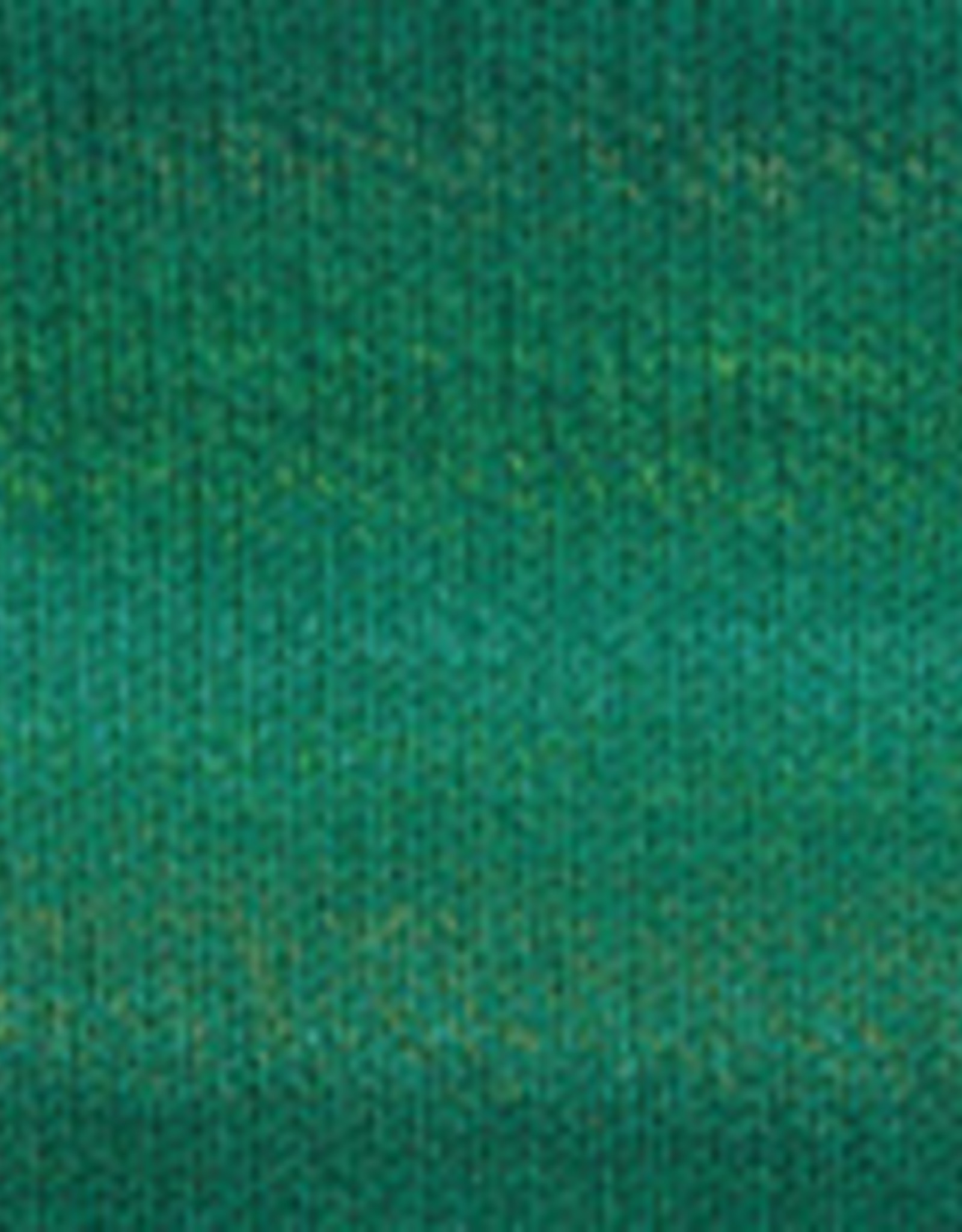 Plymouth Yarns Encore 100g ColorSpun 7765 turquoise