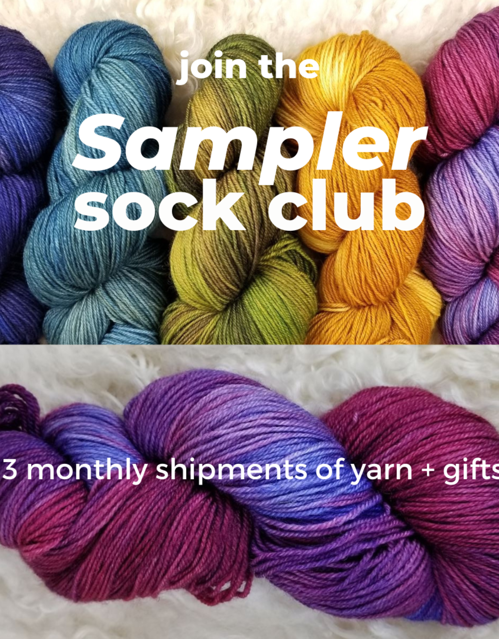 Palouse Yarn Co Sampler SOCK CLUB!