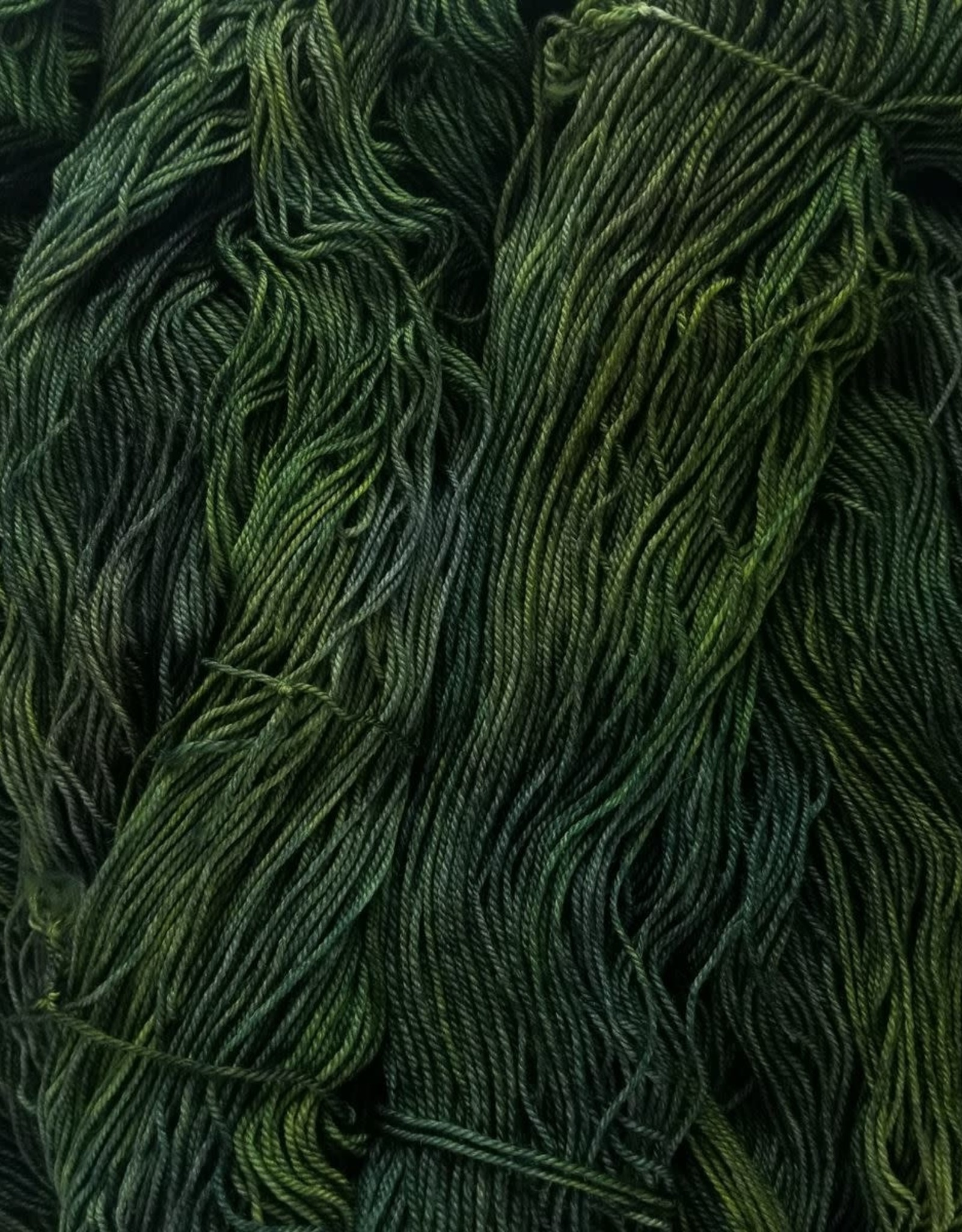 Palouse Yarn Co Cash Squeeze Swamp Thing