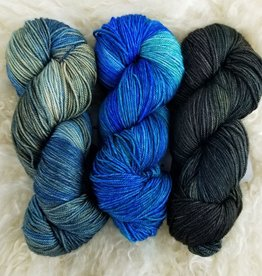 Palouse Yarn Co Squeeze Set of 3- The Wilds & Alicia & Palouse