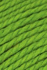 Brown Sheep NatureSpun Sp 50g 109 Spring Green