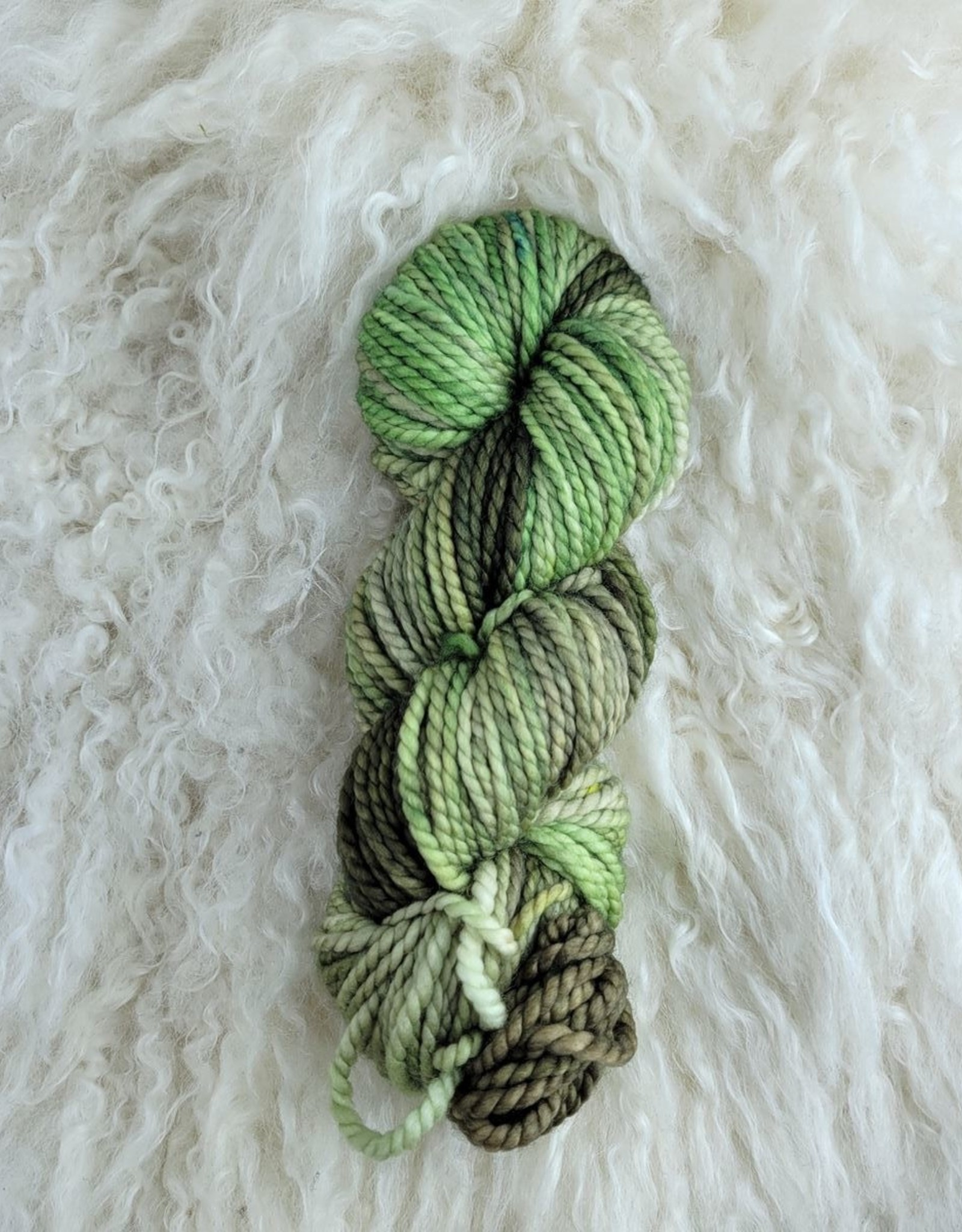 Palouse Yarn Co Columbia Gorge-ous Chunky 100g Dried Sage