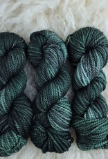Palouse Yarn Co Columbia Gorge-ous Chunky 100g Forest Primeval
