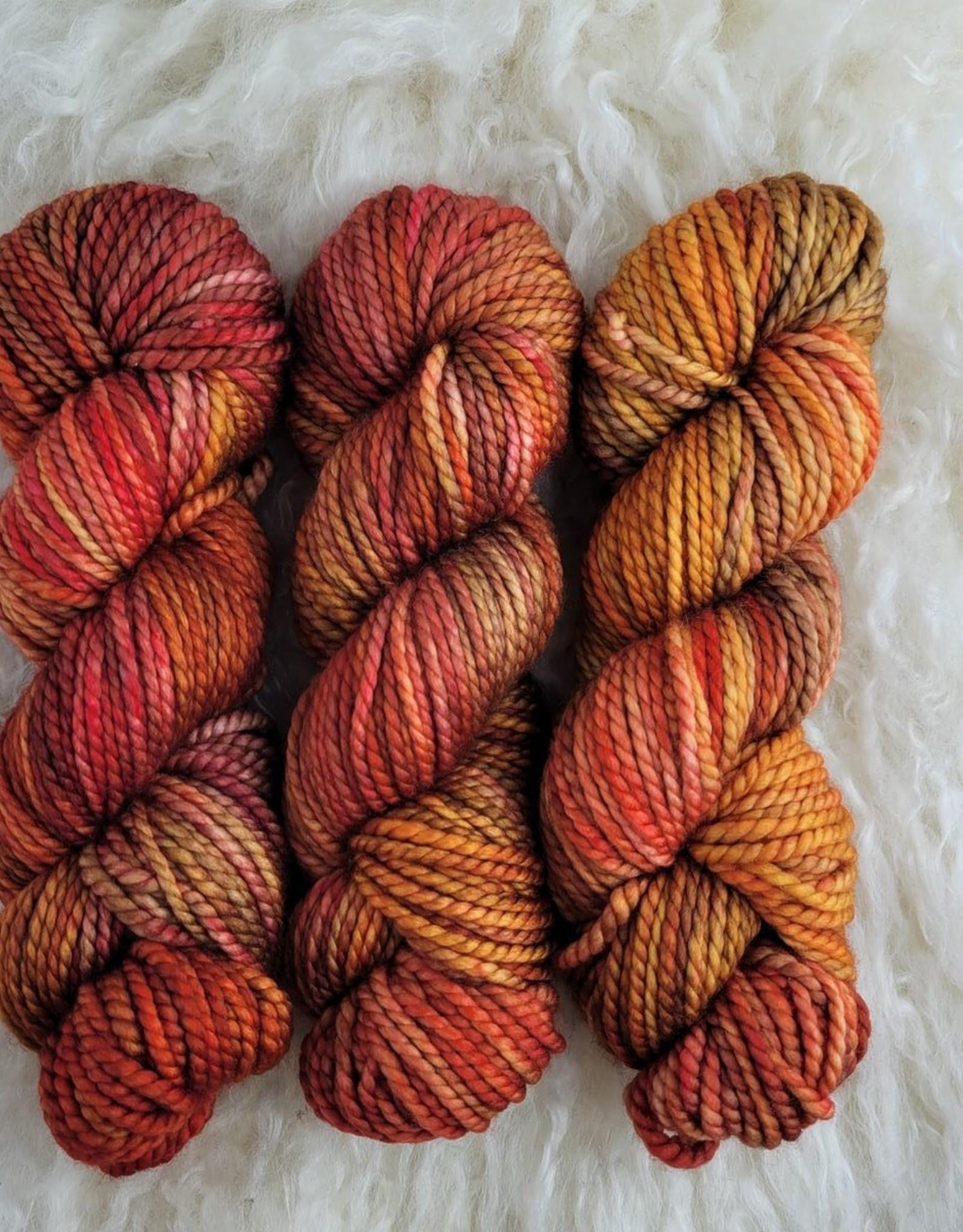 Palouse Yarn Co Columbia Gorge-ous Chunky 100g Pumpkins