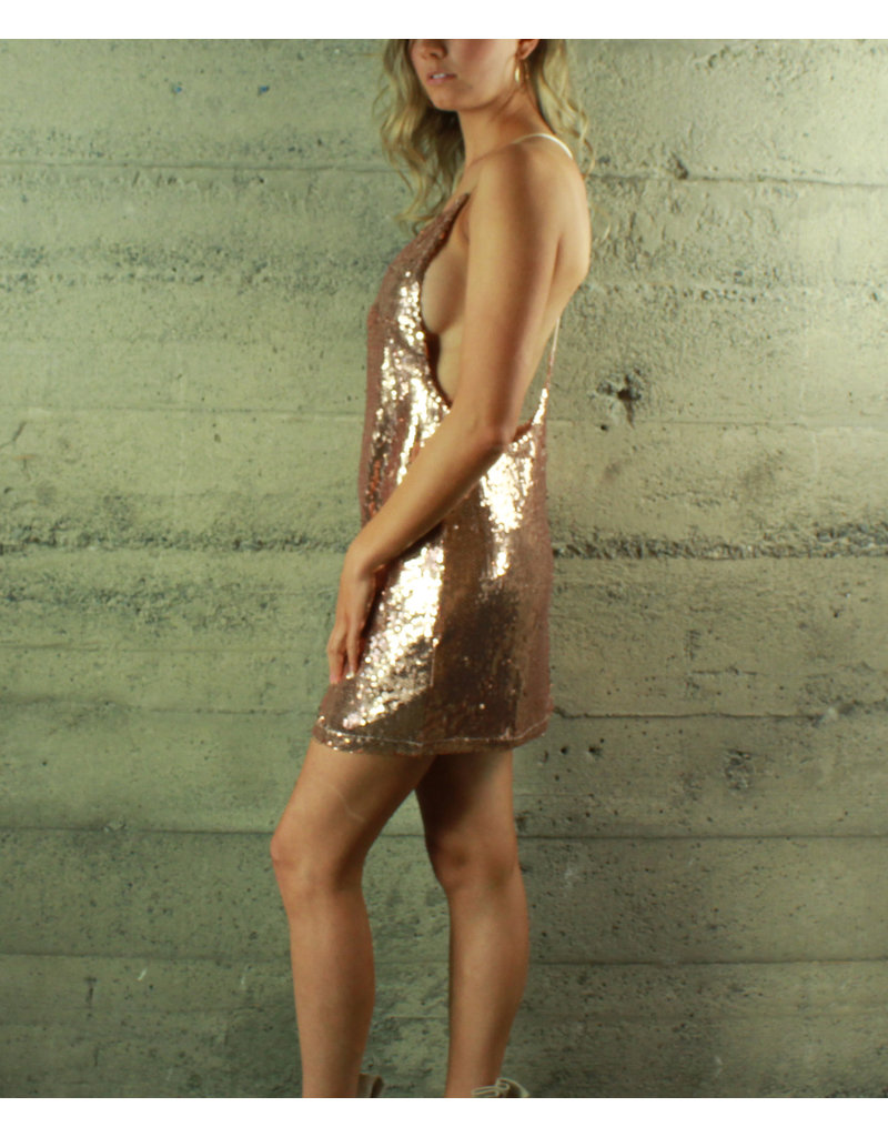 Evenuel Charlie Sequin Shift Dress
