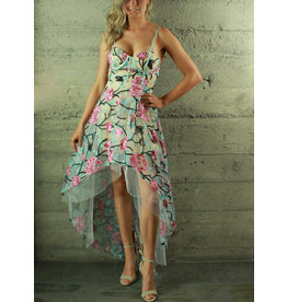 Banju Jazmin Floral Hi-Lo Dress