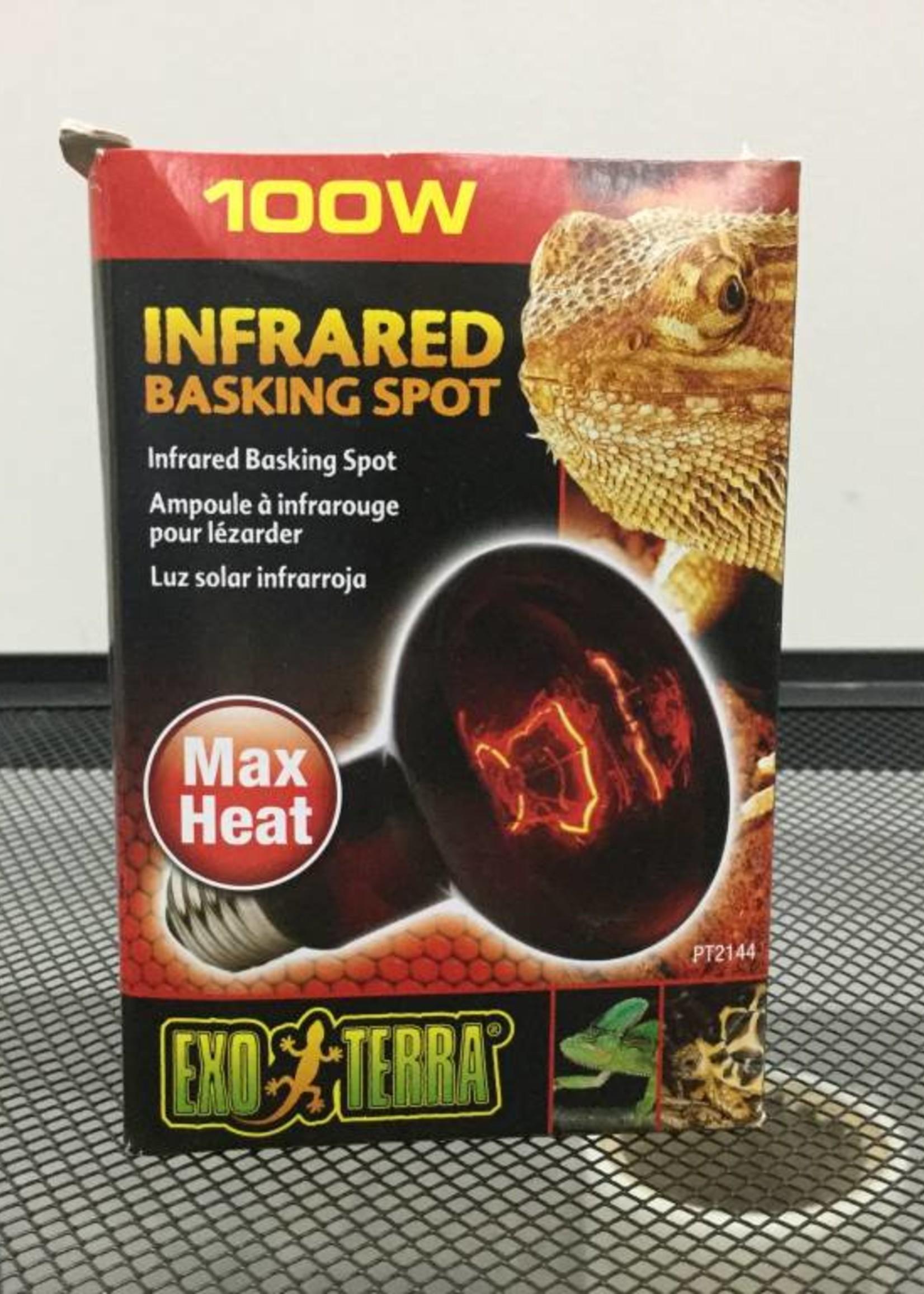 EX Heat Glo infrared Lamp 100W-V
