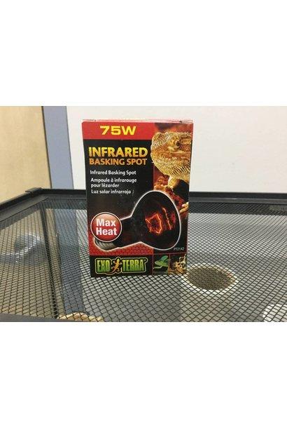 Exo Terra Infrared Basking Spot - R20 / 75W