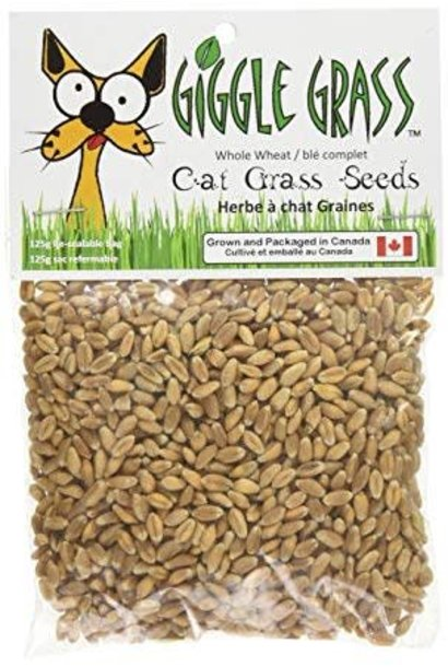 Giggle Grass Oat Grass Seeds 125gm