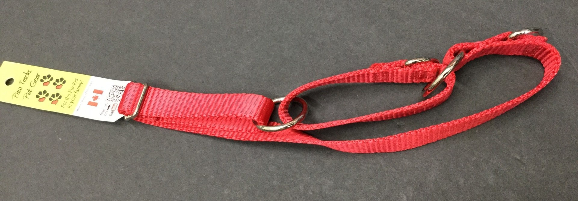 """3/4"""" Wide All-Webbing Martingale Style Nylon Dog Collar Red Adjusts To 24"""""""