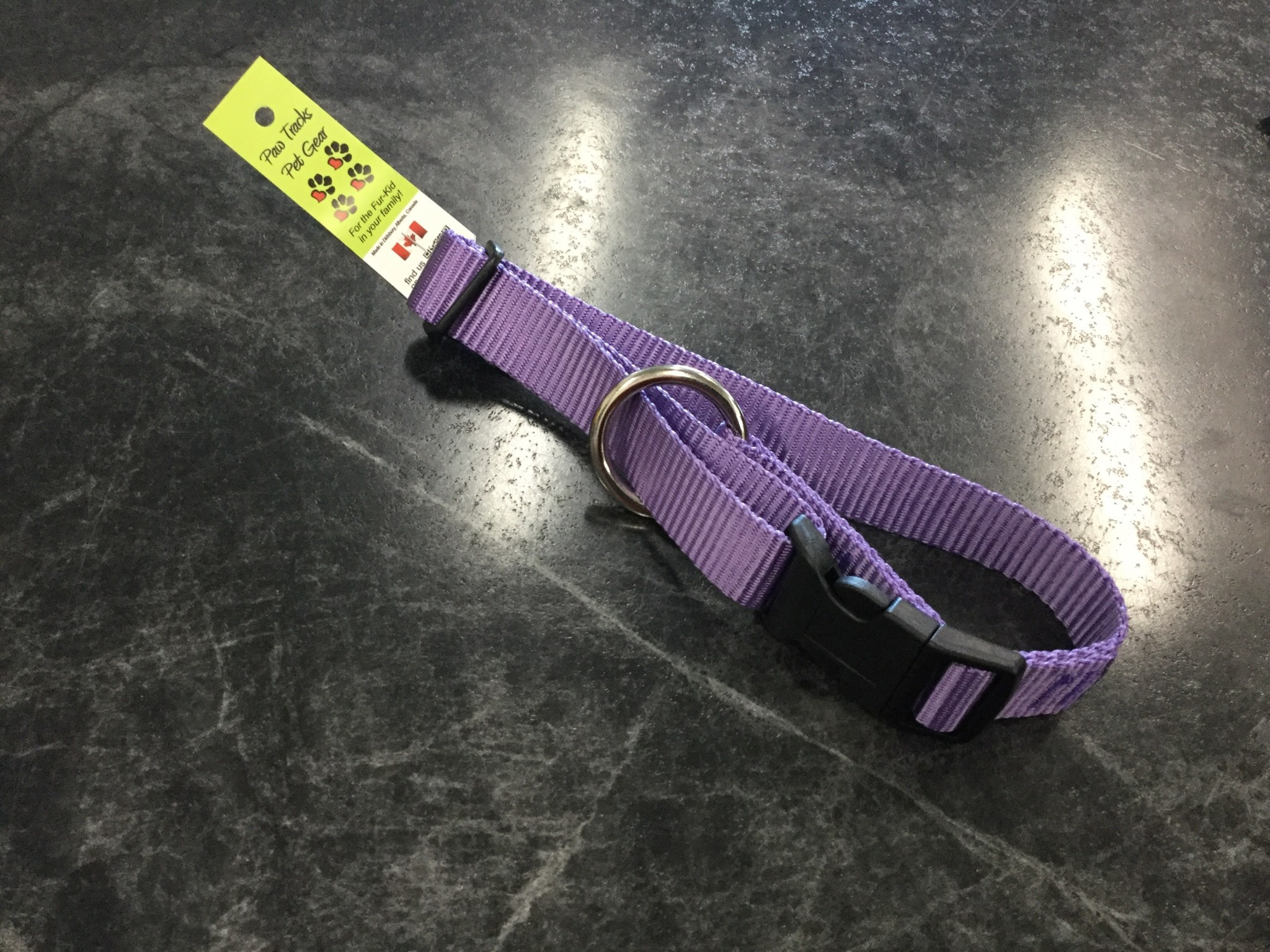 "1"" Adjustable Dog Collar Purple 14-22""-1"