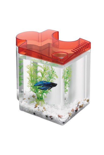 Aqueon Kit Betta Puzzle Red 0.5 Gallon